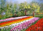 L'arcobaleno negli occhi, tulipani in Olanda  - Carla Colombo - Olio - 225 €