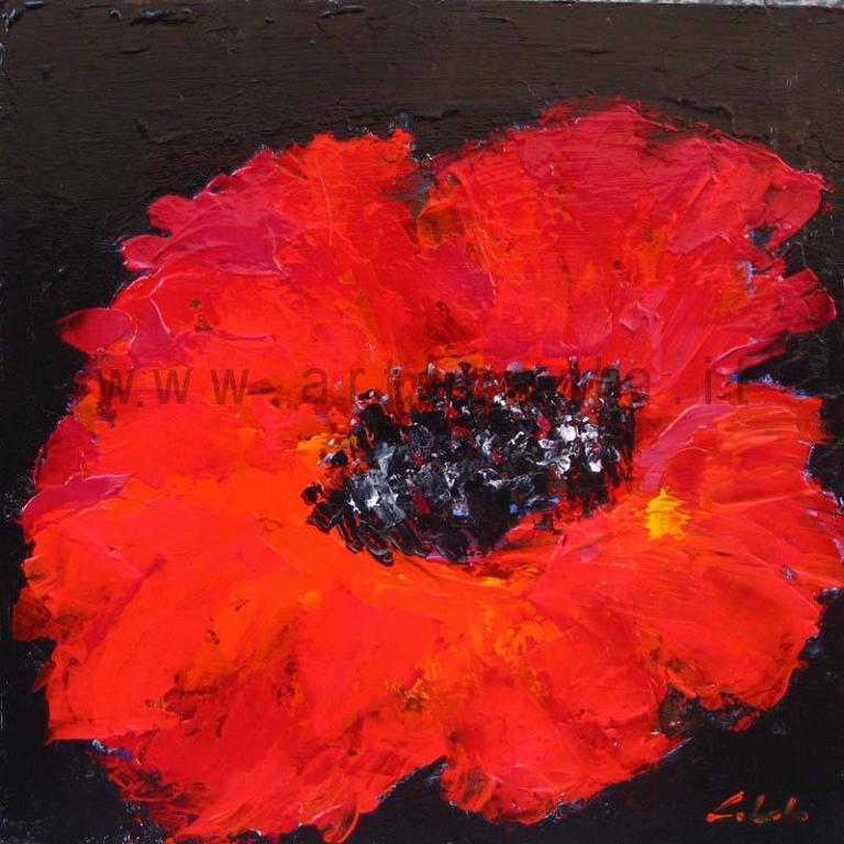 Rosso e nero - Prezzo speciale  - Carla Colombo - Acrilico - 85 €