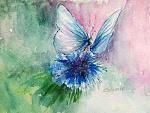 Incantesimo azzurro prezzo speciale - Carla Colombo - Acquerello - 20€
