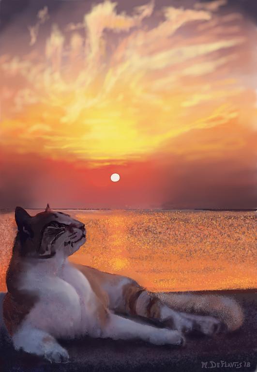 Tramonto col gatto - Michele De Flaviis - Digital Art