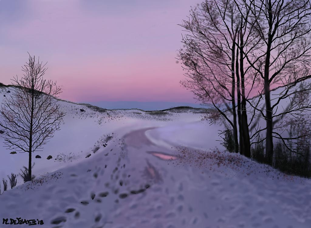 Orme sulla prima nevicata - Michele De Flaviis - Digital Art
