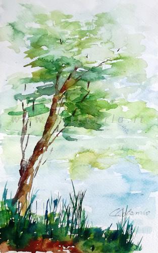 Un angolo di cuore sul mio fiume  - Carla Colombo - Acquerello -  €