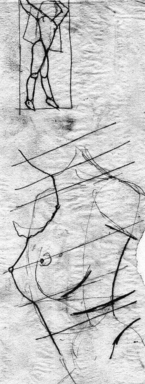 studio anatomico 10 - daniele rallo - penna -  €