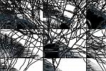 Scomposizione cognitiva - Massimo Di Stefano - Digital Art - 150€