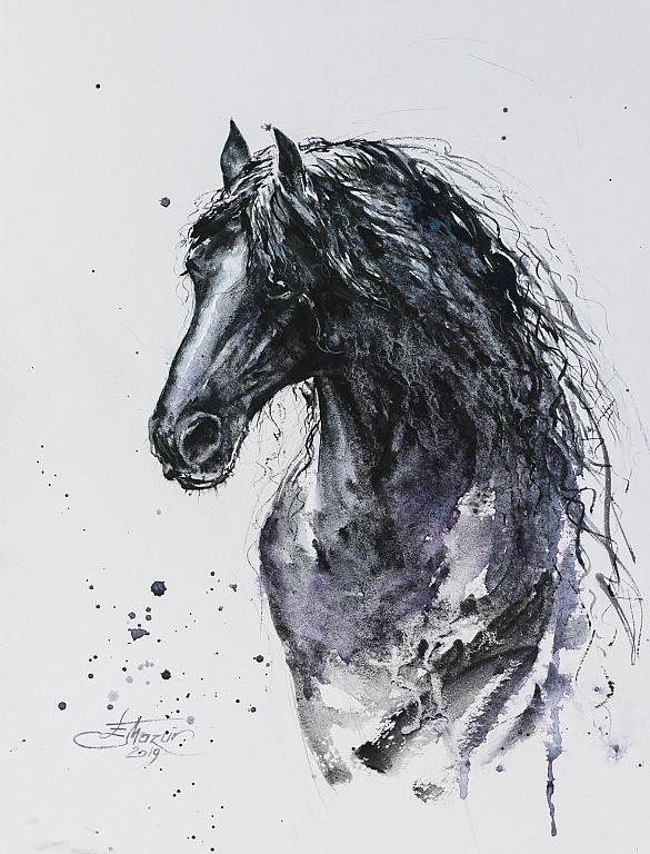 Cavallo - Eve Mazur - Acquerello - 59 €