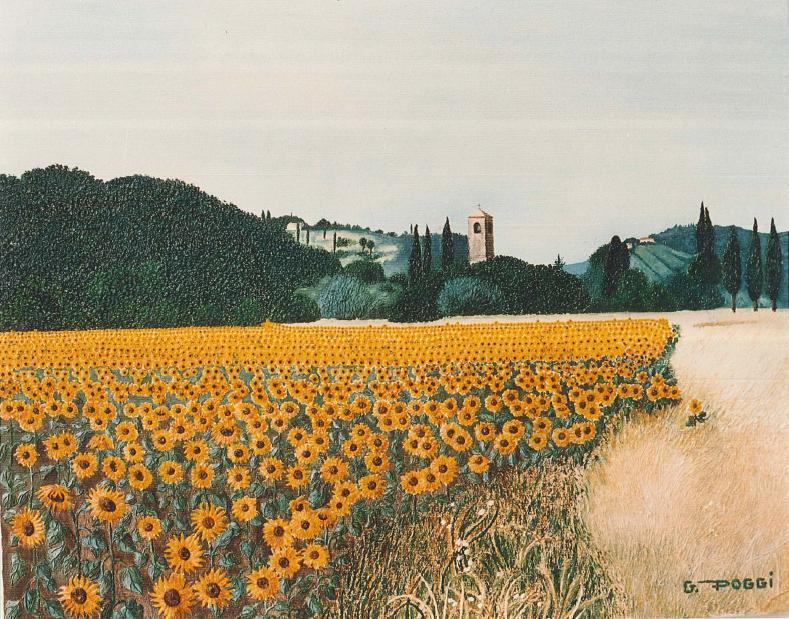 I girasoli - Gabriella Poggi - Olio