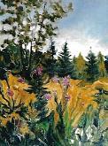 Flora alpina - mario fanconi - Olio