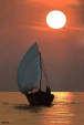 Innamorati al tramonto - Michele De Flaviis - Digital Art - 100€
