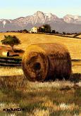 Campagna moscianese - Michele De Flaviis - Digital Art - 100€