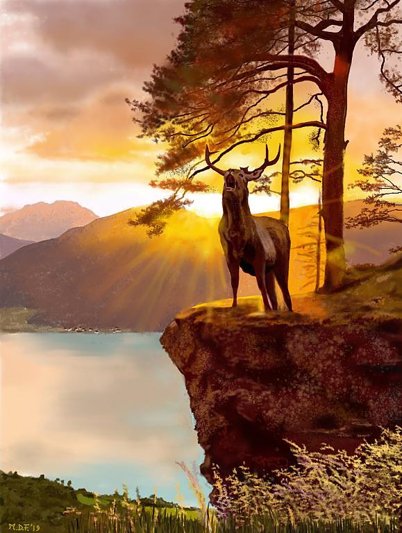 Bramito del cervo - Michele De Flaviis - Digital Art