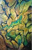 lucertola - mario fanconi - Olio