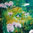 fiori rosa alium - mario fanconi - Olio