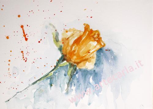Bocciolo giallo per te  - Carla Colombo - Acquerello -  €