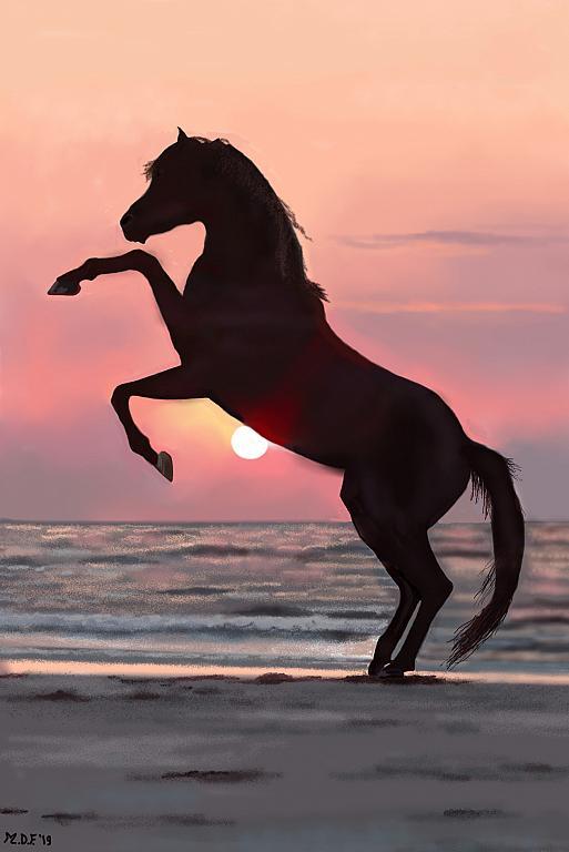 Cavallo - Michele De Flaviis - Digital Art - 80 €