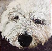 Dogghy - Olga Kozhanova - Olio - € - Venduto!