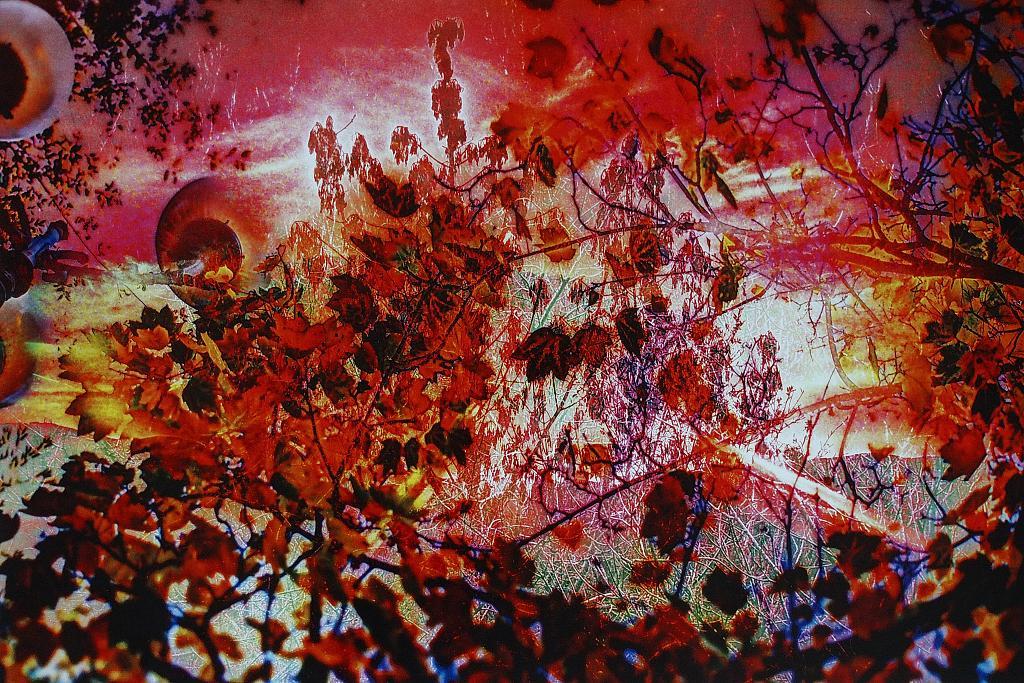 La visione delle 4 AM - Massimo Di Stefano - Digital Art