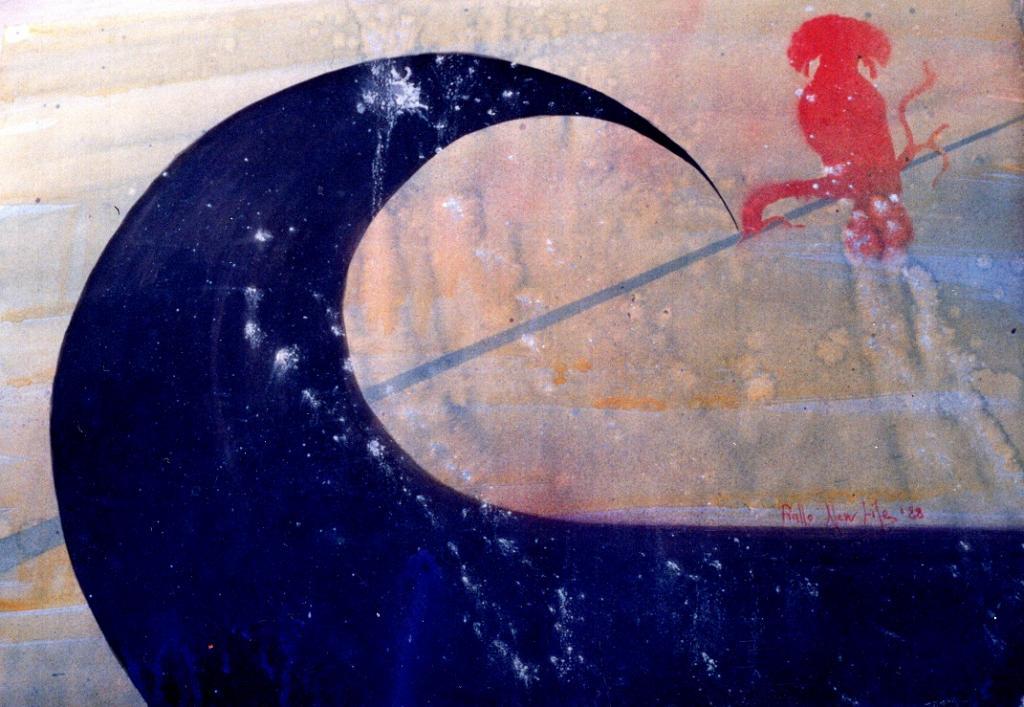 l'upupa e l'universo - daniele Rallo  - mista -  €