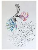 Metamorfosi - Roberto Gilli - Pastelli - 230€