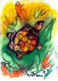 tartaruga sacra - mario fanconi - Pastelli