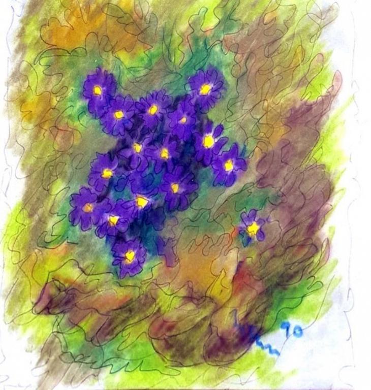 primule viola - mario fanconi - Pastelli