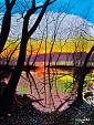 Sulla sponda del lago - GRECO Bruno - Acrilico
