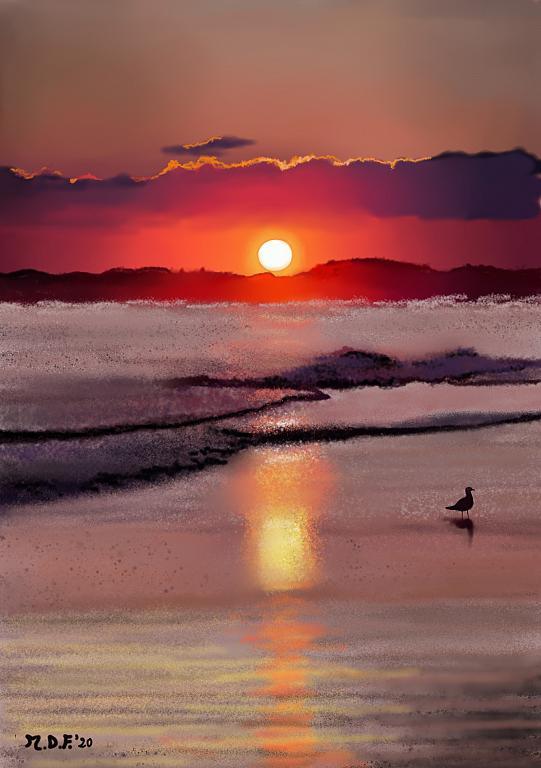 Il gabbiano e il tramonto - Michele De Flaviis - Digital Art - 80 €
