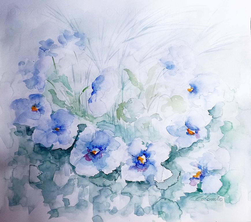 Come i tuoi occhi...azzurri  - Carla Colombo - Acquerello - 100 €