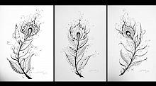 2 - Serie Leggera di piuma di pavone  - Carla Colombo - Carboncino - 35€