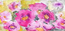 Esplosione di rosa - Prezzo speciale  - Carla Colombo - Acquerello - 18€