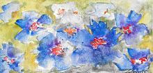 Esplosione d'azzurro - Prezzo speciale - Carla Colombo - Acquerello - 18€