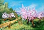 Benvenuta primavera 2, i peschi sono in fiore  - Carla Colombo - Olio - 420€