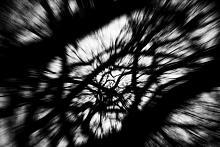 Astral Projection  - Massimo Di Stefano - Digital Art