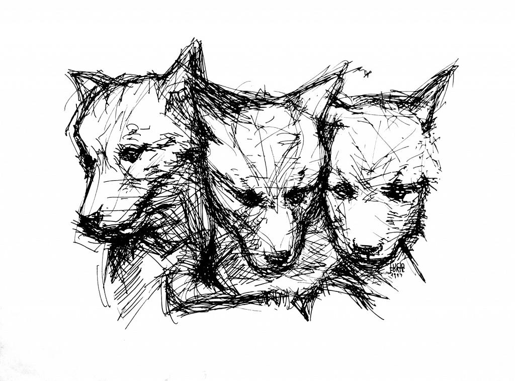 Wolf Cubs - Lucio Forte - China su carta