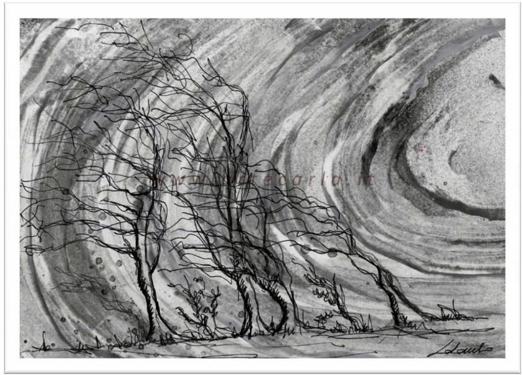 Il vento forte distrugge e lascia scheletri  - Carla Colombo - Acrilico, biro  - 85 €