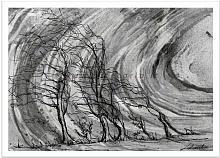 Il vento forte distrugge e lascia scheletri  - Carla Colombo - Acrilico, biro  - 85€