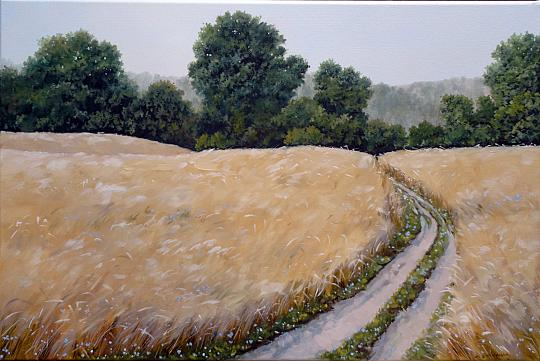 Campo di grano dorato - Larisa  Smirnova - Olio - 400 €